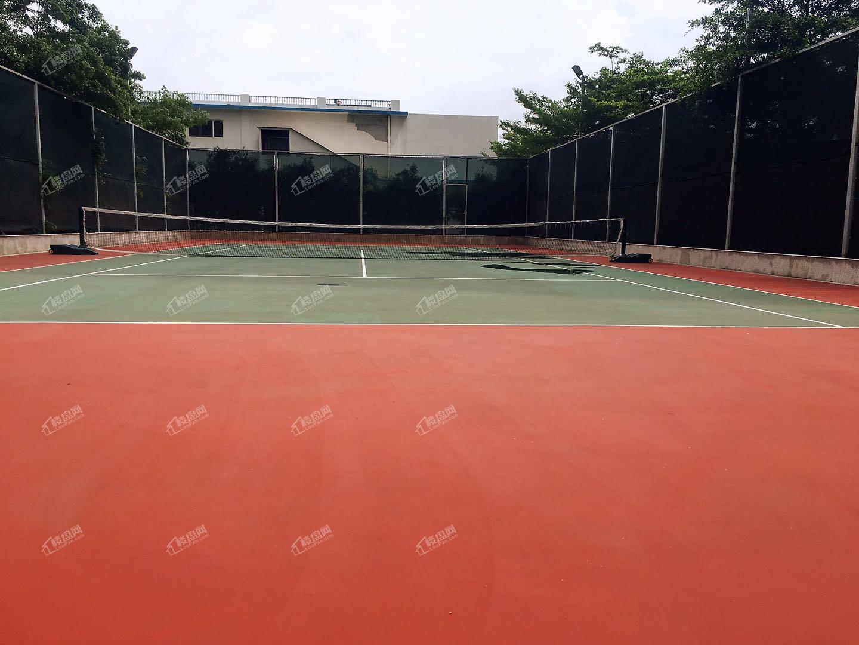 海逸豪园小区配套-网球场