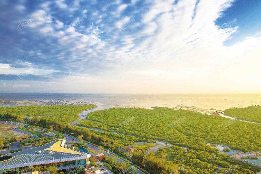 中信国安北海第一城一号地块航拍图