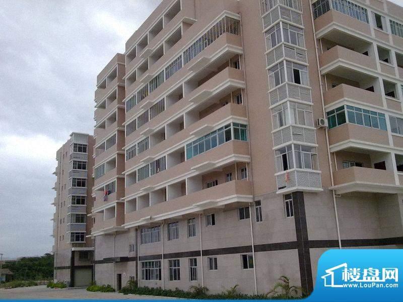联丰水岸豪园9层单身公寓(20101020)