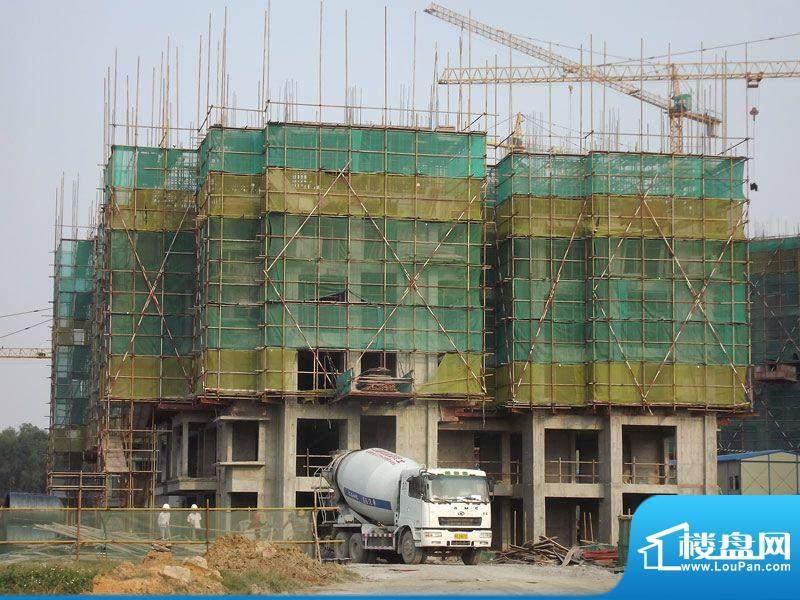 爱琴海景20111130项目1、2#楼施工进度: