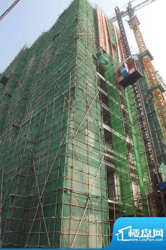 东旭华庭项目工程进度图(2011-11-17)