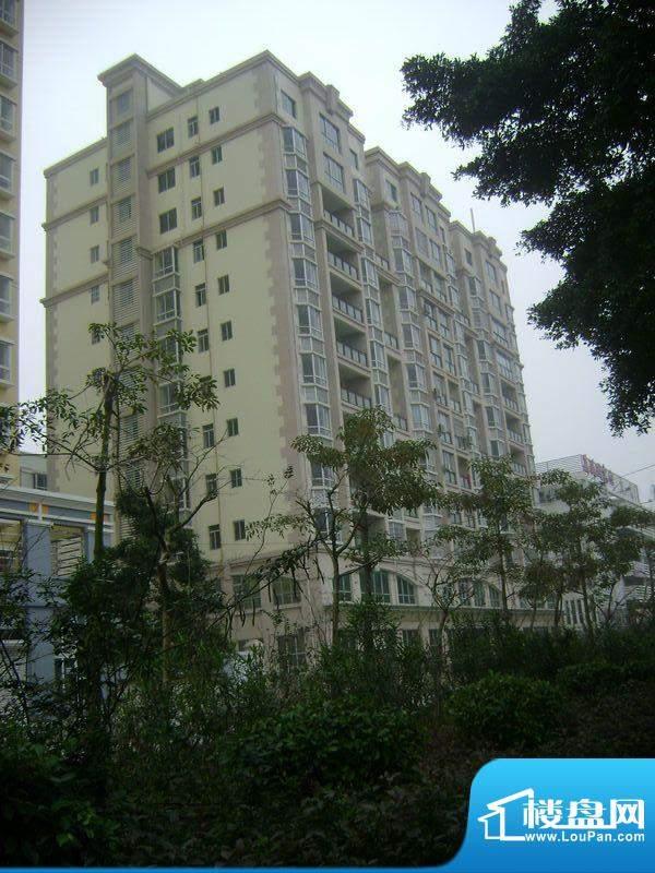 诚安公寓项目实景图(2012-02-01)