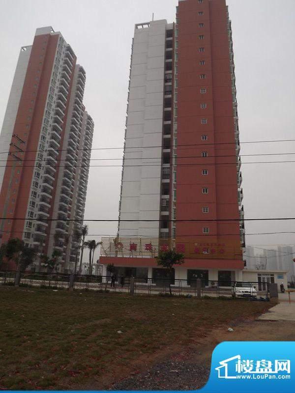 南珠家园项目沿南珠大道实景图20120322