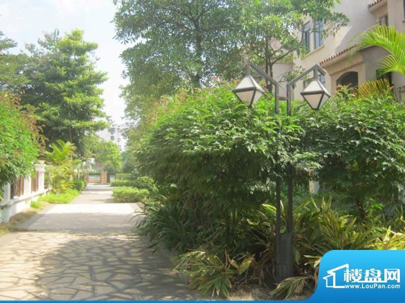 迪亚小城小区街道实景图(2010-10-18)