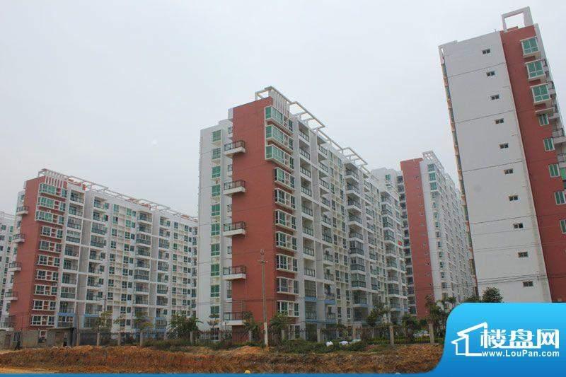 九州家园项目现房实景20111228