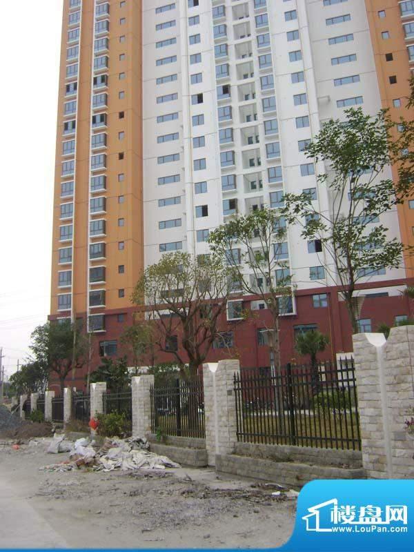 哈尔滨广场小区后面实景20110118