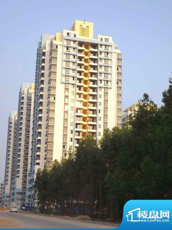 白金瀚宫项目实景图20111130