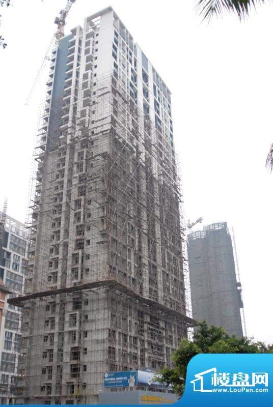 君临·西海岸小区1#楼东面实景20110219
