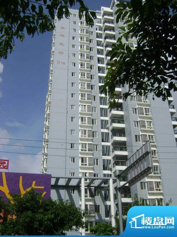 香海花园小区B#楼实景图20110810