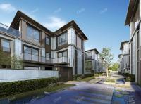 南宁市兴宁区合院别墅总价250万一套 70年产权