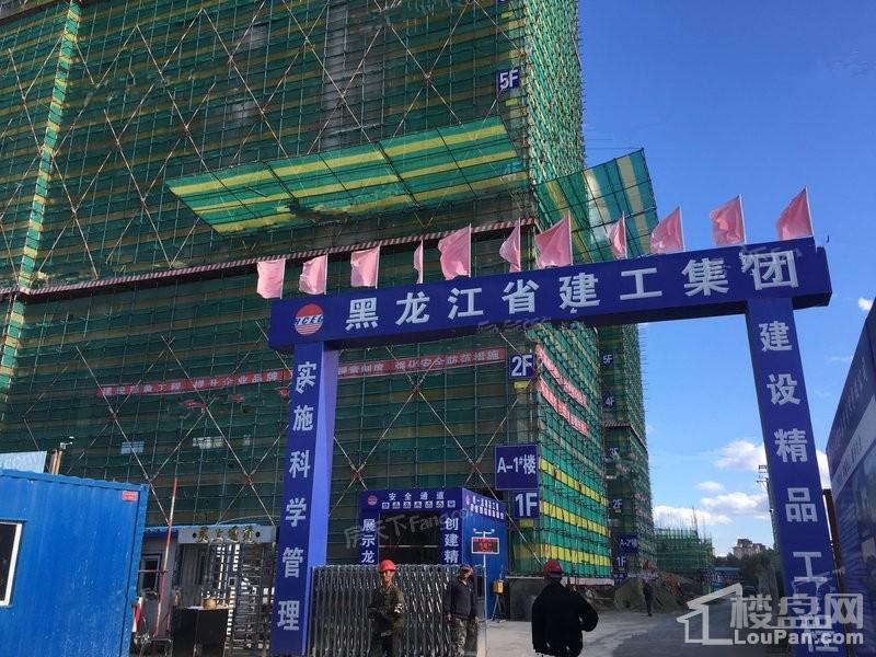 中亚MOMA实景图