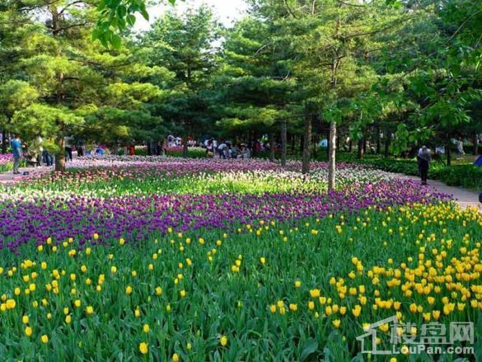 清滨花园配套图