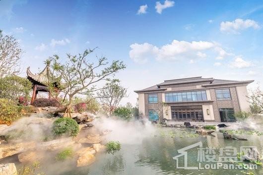 泰禾红树湾院子实景图
