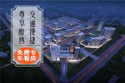 荆州百盟光彩商贸城效果图