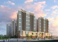 东海国际新城