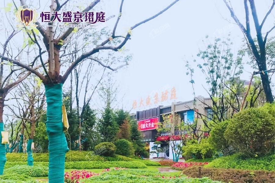 恒大盛京珺庭实景图