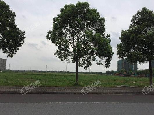 太湖雍华府实景图
