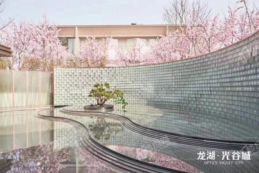 龙湖·光谷城 | 御景实景图