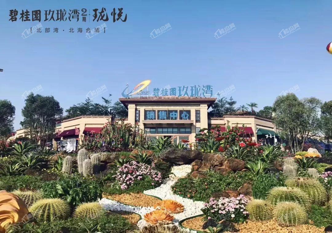 合浦碧桂园玖珑湾实景图