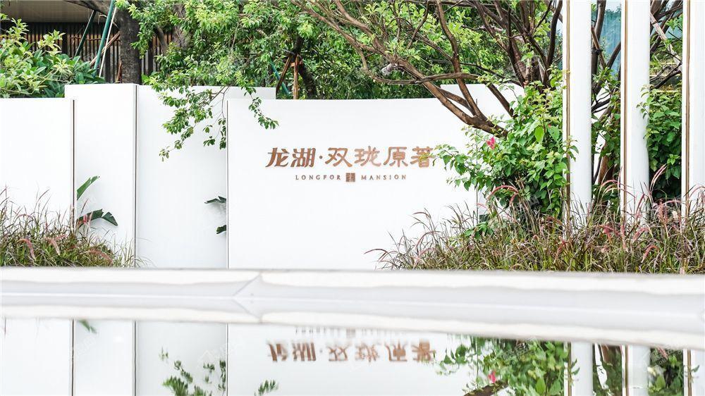 龙湖双珑原著实景图