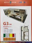 公寓G3户型图