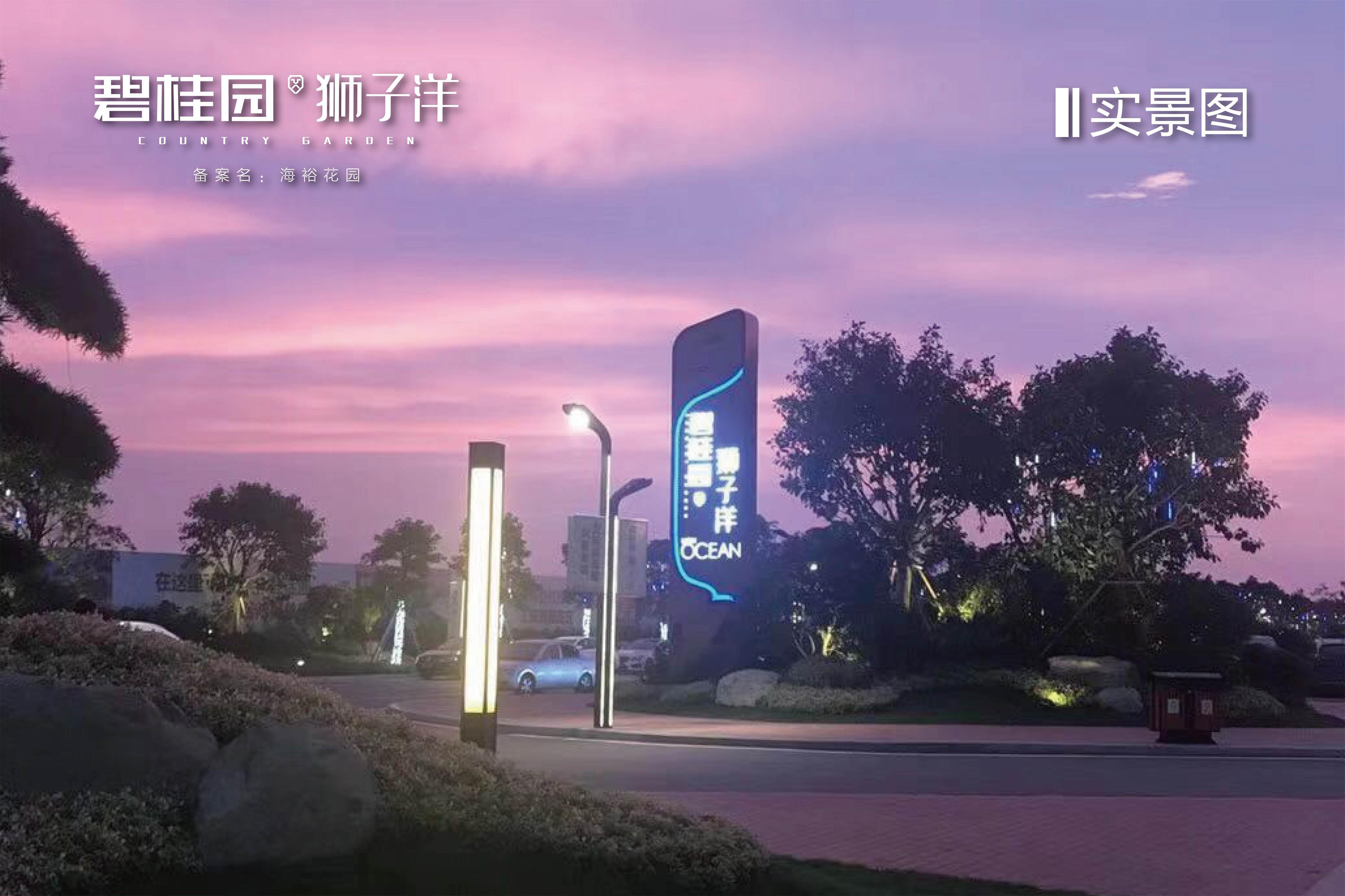碧桂园狮子洋实景图