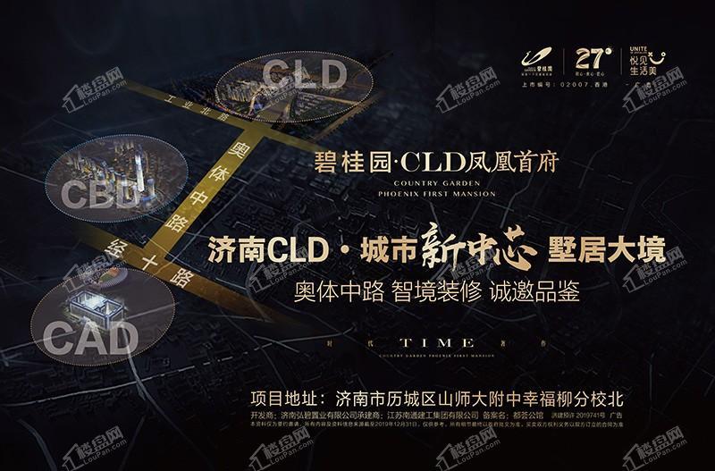 碧桂园CLD凤凰首府效果图