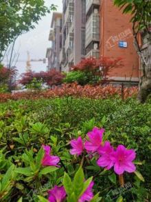 香榭丽花园