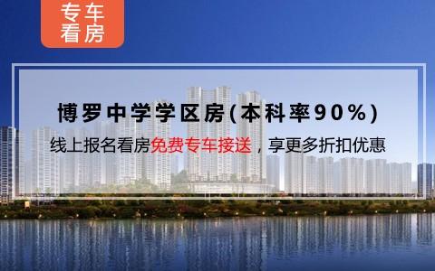 中洲半岛城邦效果图