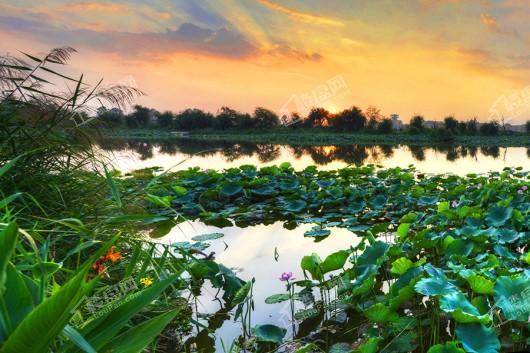 昆明嘉丽泽恒大·养生谷景观实景