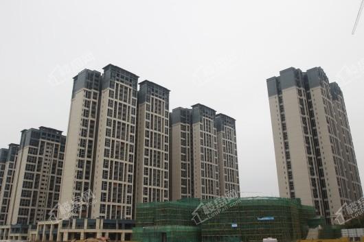 碧桂园·海湾城实景图