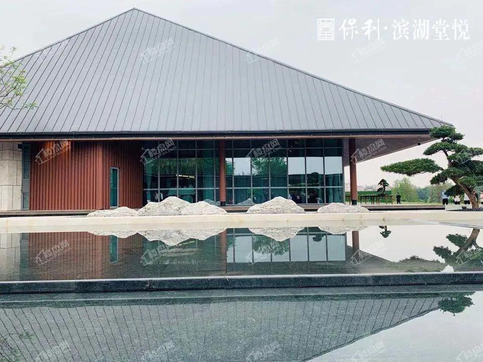 保利滨湖堂悦实景图