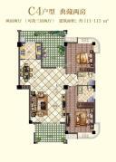 C4户型3室2厅2卫111平