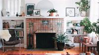 新装修的房子放什么植物比较好