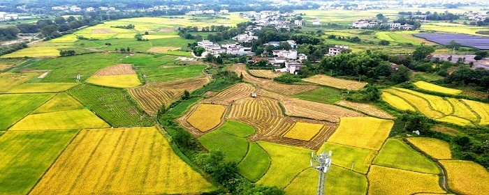 农村房屋土地证如何办理
