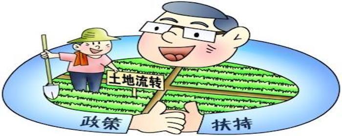 浙江农村土地流转补贴标准是什么