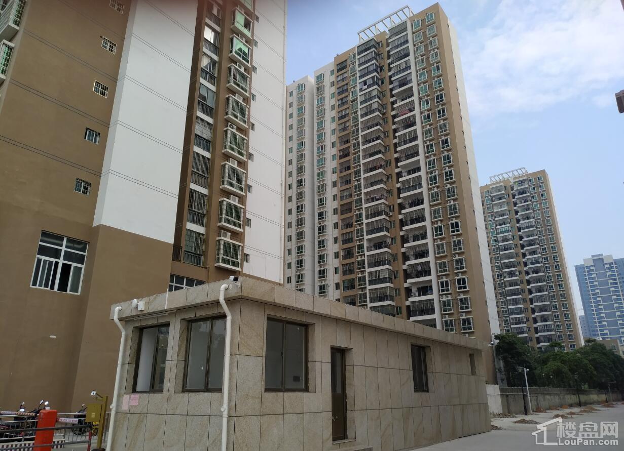 东峰国际公寓实景图