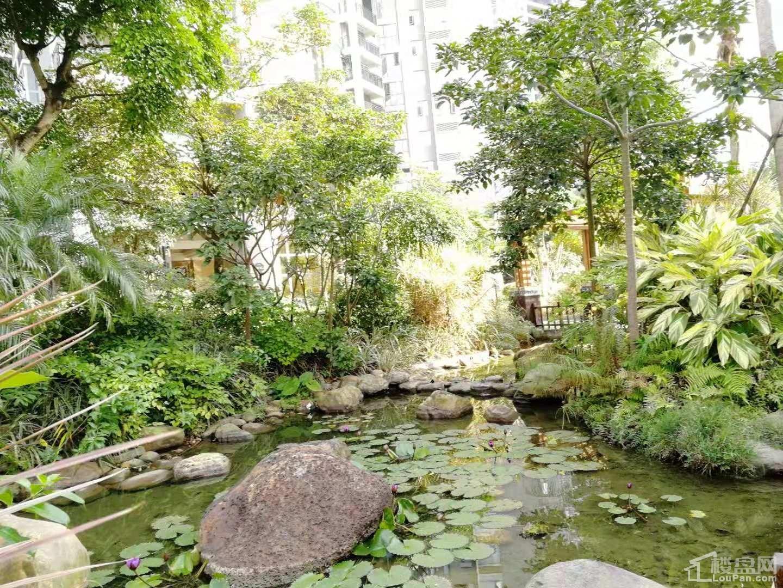 智弘银城绿洲小区实景图
