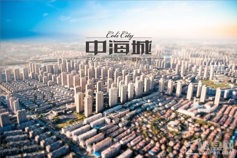 中海城鸟瞰图