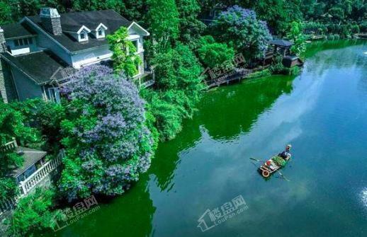 龙湖香樟林效果图