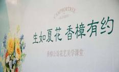 绿城东方香樟公馆目前在售合院别墅 总价480-700万/套