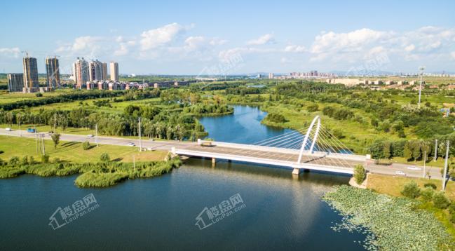 蒲河一河两岸景观带