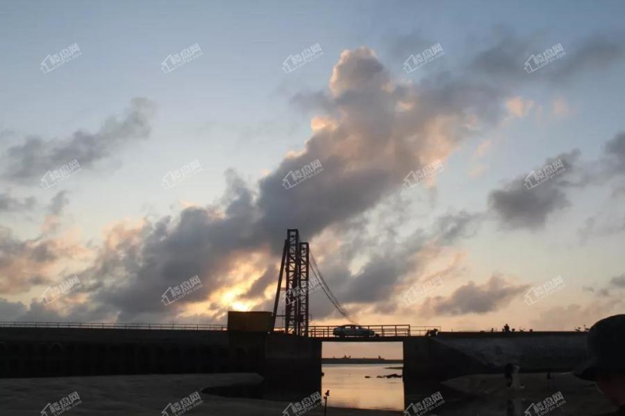 碧桂园北海阳光|大海的馈赠——阳光红树林趣味赶海记_北海楼盘网