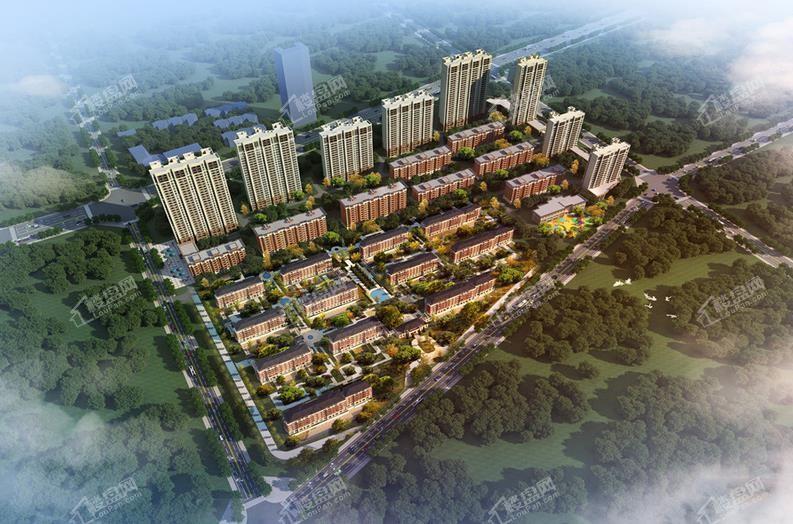 新湖仙林金谷璞园鸟瞰图