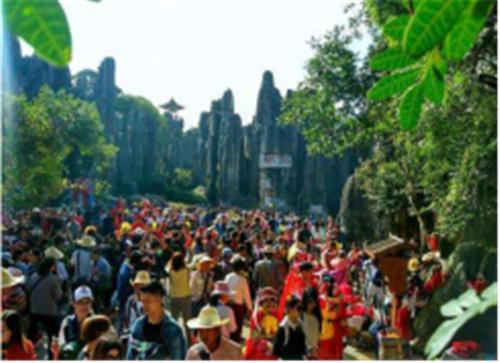 对比大理丽江旅游业的发展为什么觉得昆明石林未来可期