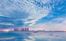 境生极静 | 2021,全沈阳向东看
