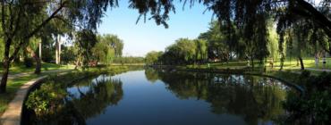 为什么越来越多人想住在公园旁?