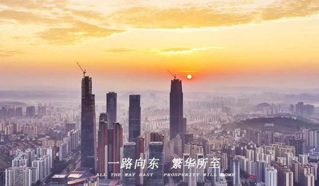 民族大道上的第4个信号,90%的凤岭人都懂了!