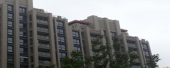 楼顶物业违建怎么处理