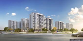 好消息!湛江市将为这些人提供1380套公共租赁住房!